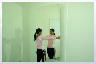 Mirrorlite Glassless Mirrors Gym Mirrors Dance Mirrors